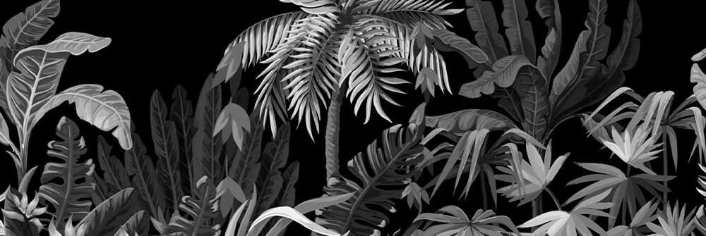 Djungelfototapet i svartvitt