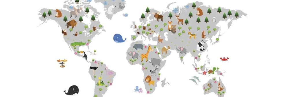 Världskartor för barn på tapet