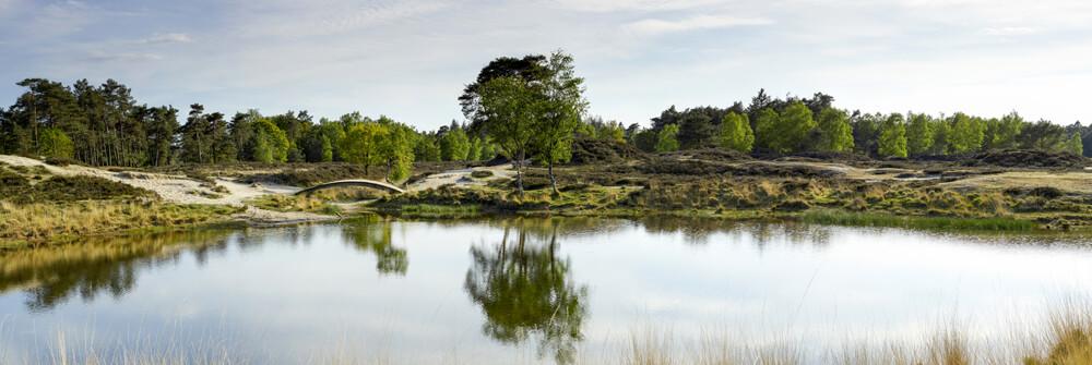 Tapeter med landskap