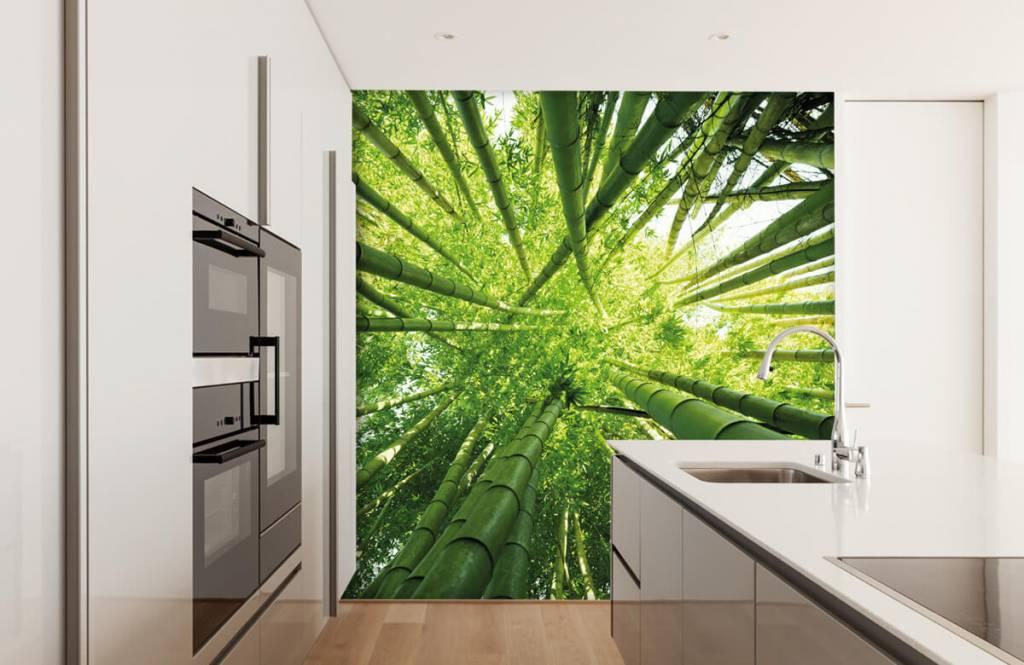 Skog tapet Bambu 4