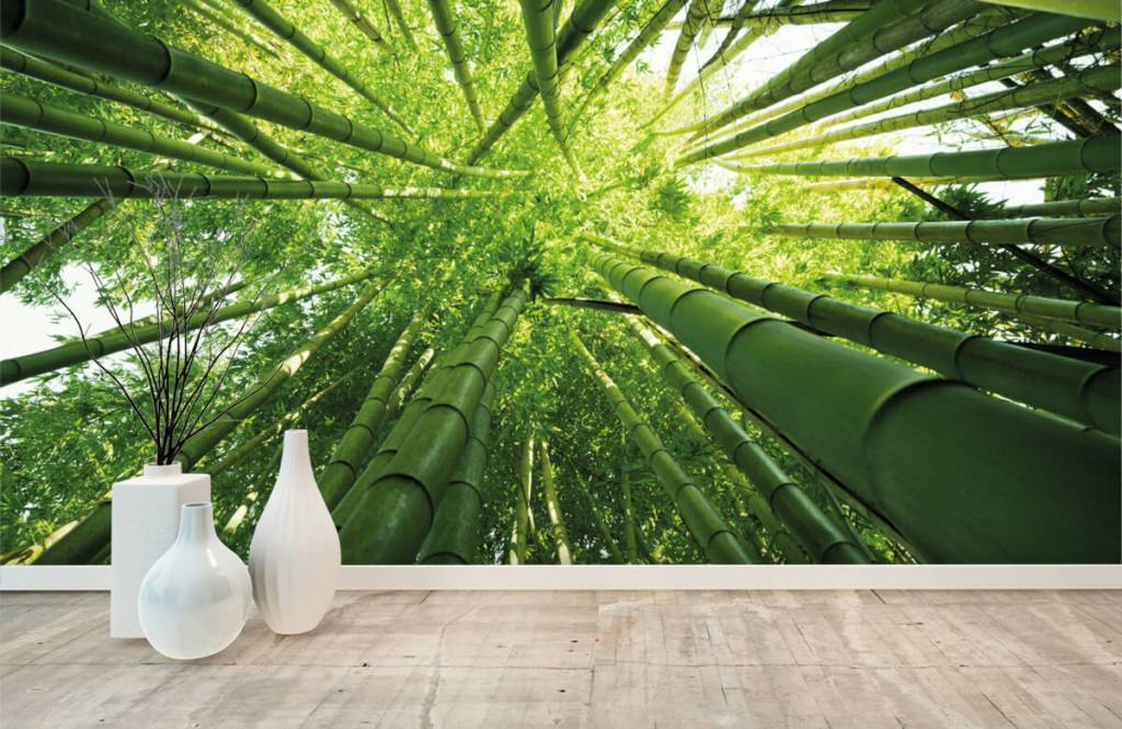 Skog tapet Bambu 8