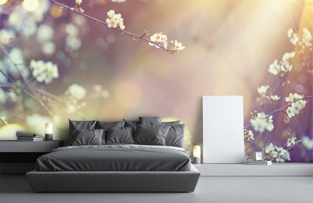 Blossom - Blossom på en gren - Vardagsrum 2