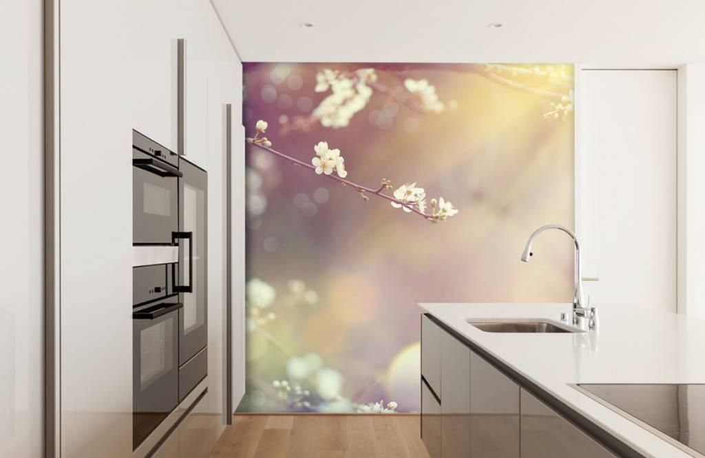 Blossom - Blossom på en gren - Vardagsrum 3