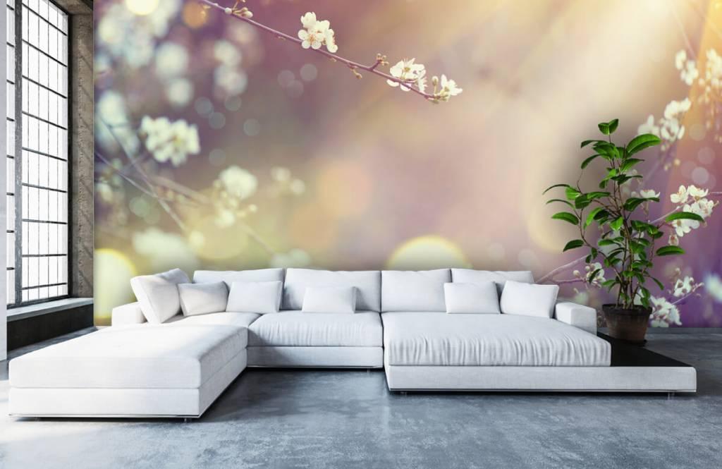 Blossom - Blossom på en gren - Vardagsrum 5