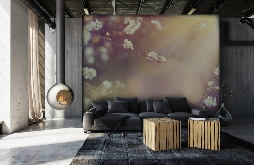Blossom - Blossom på en gren - Vardagsrum 6