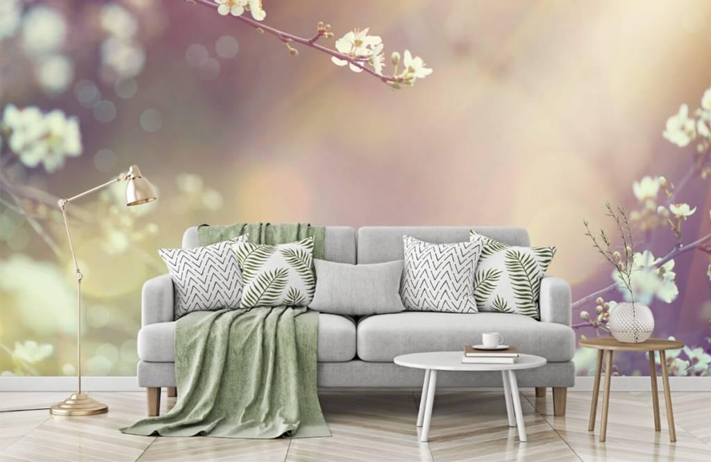Blossom - Blossom på en gren - Vardagsrum 7