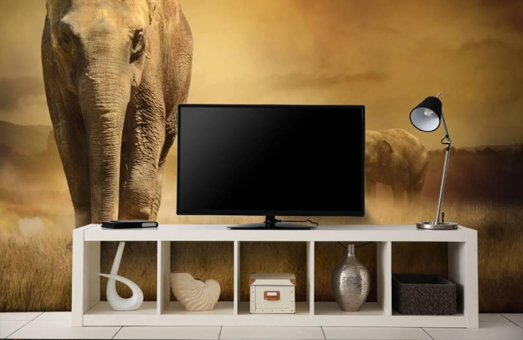 Djur Tre elefanter 6