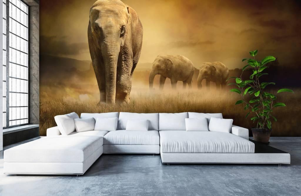 Djur Tre elefanter 7