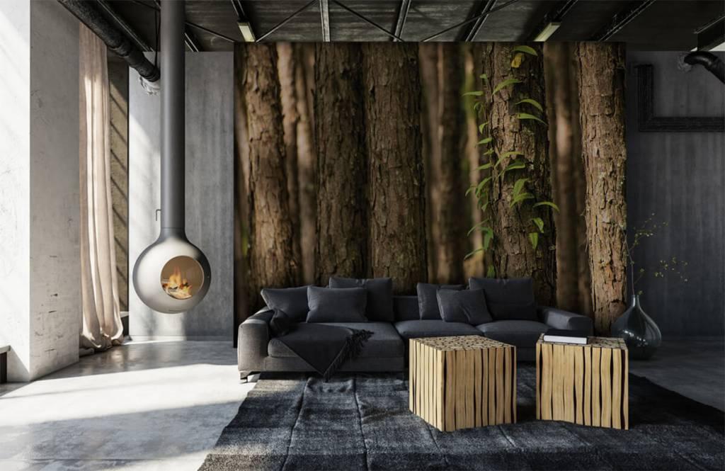 Skog tapet Tunna trädstammar 6