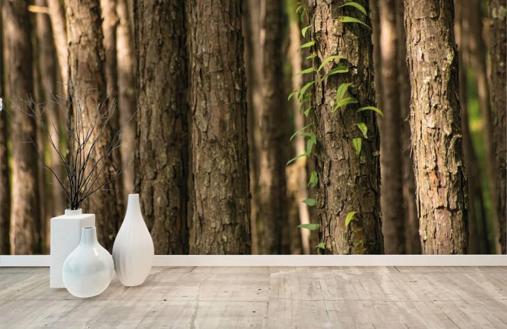 Skog tapet Tunna trädstammar 8