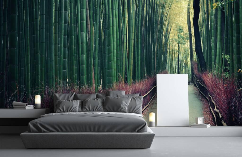 Skog tapet Bambuskog 2