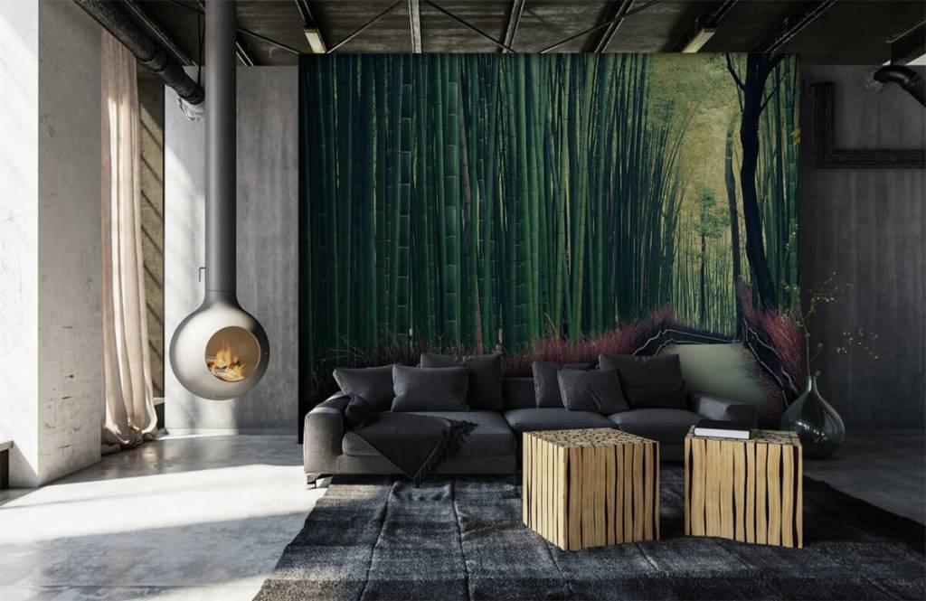 Skog tapet Bambuskog 6
