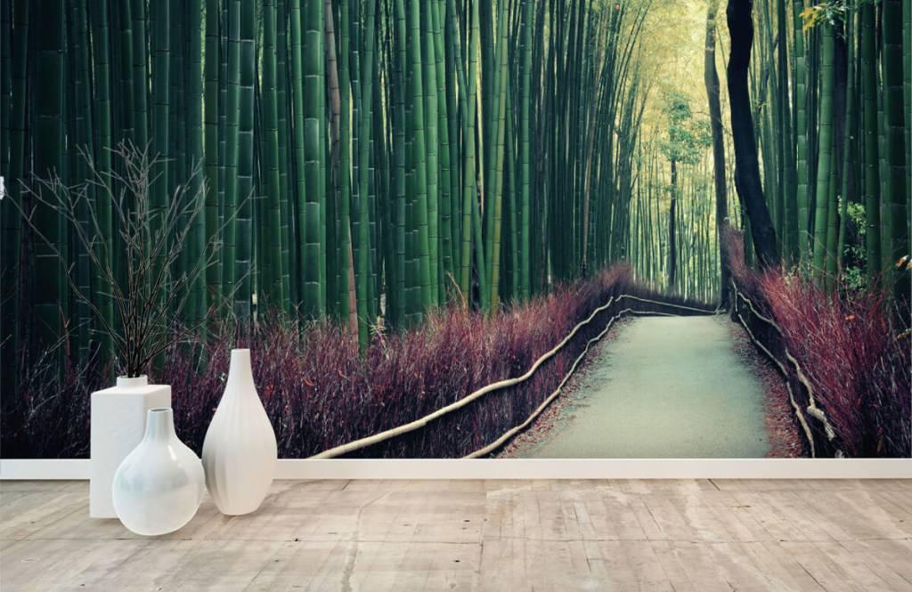 Skog tapet Bambuskog 8