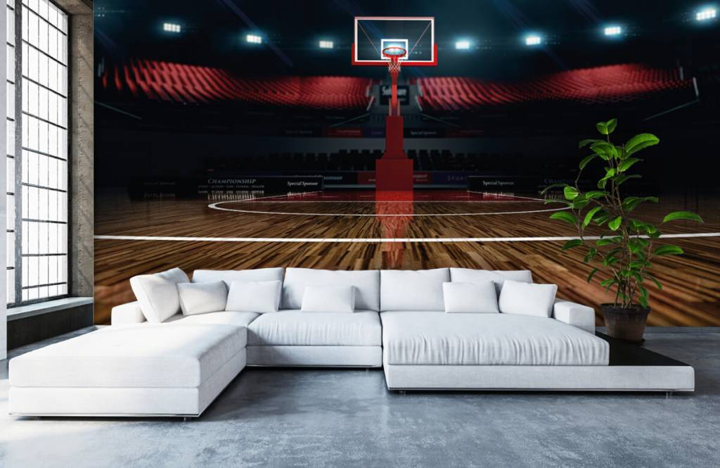 Övriga Basketarena 6
