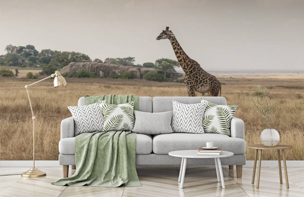 Djur Giraff på en savann 3
