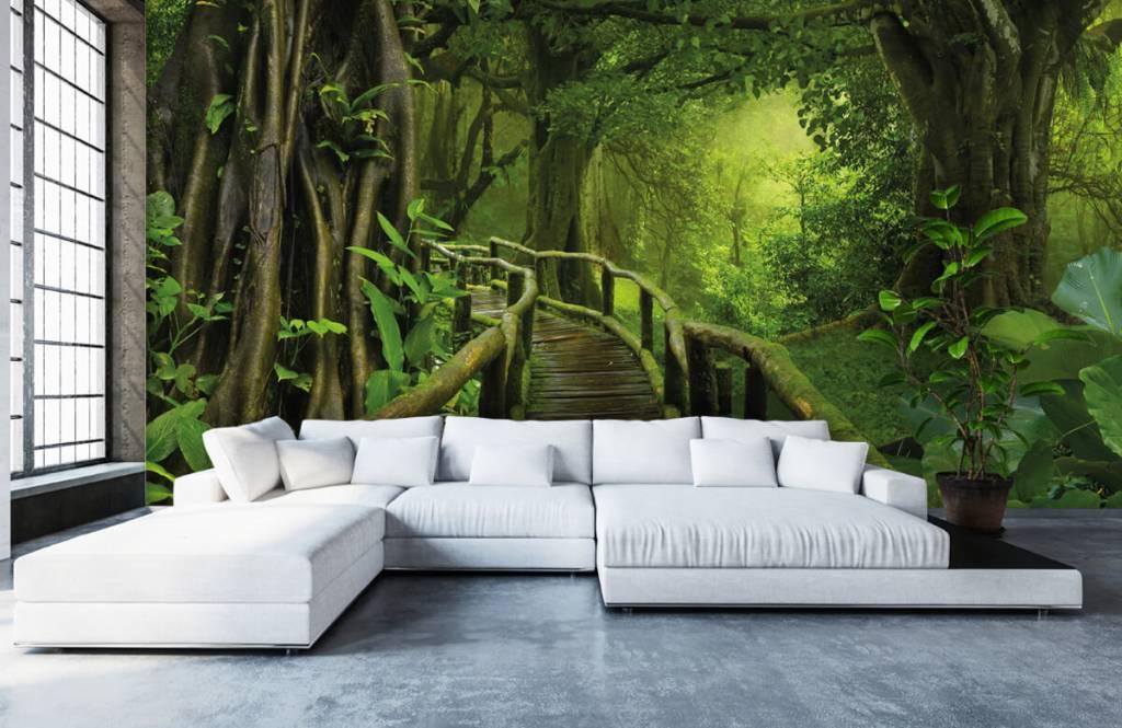 Träd Träbro till och med en grön djungel 1