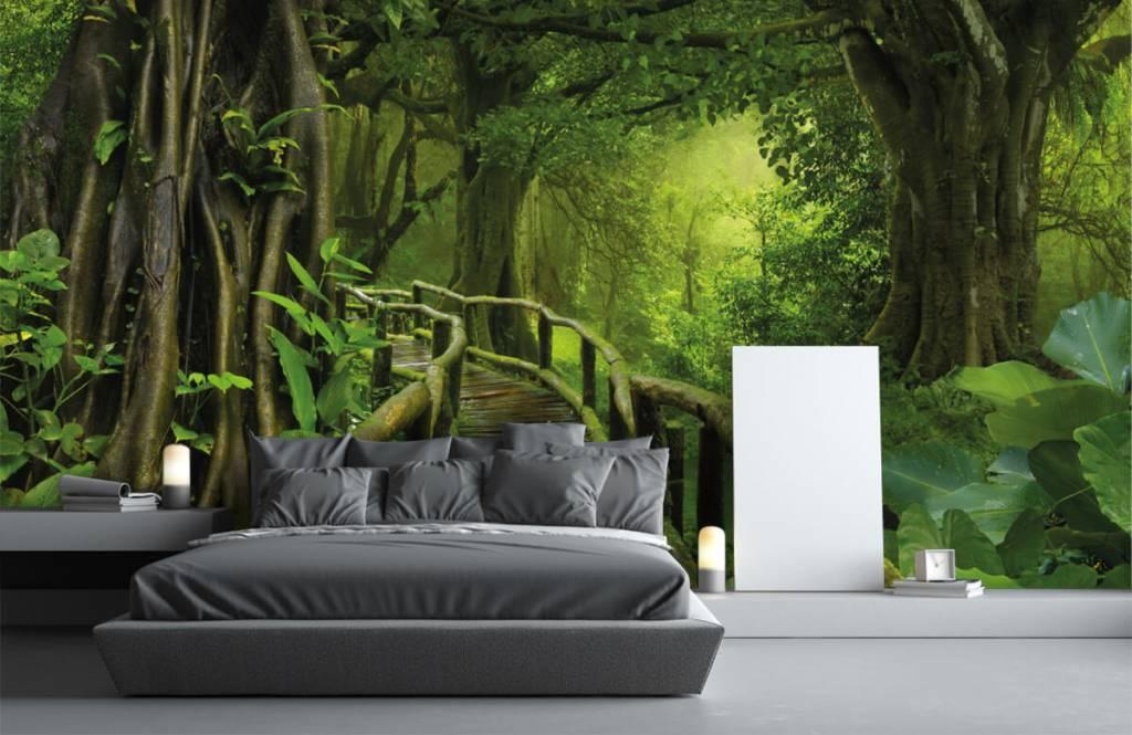 Träd Träbro till och med en grön djungel 3