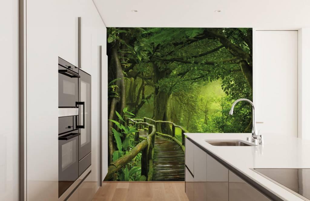 Träd Träbro till och med en grön djungel 4