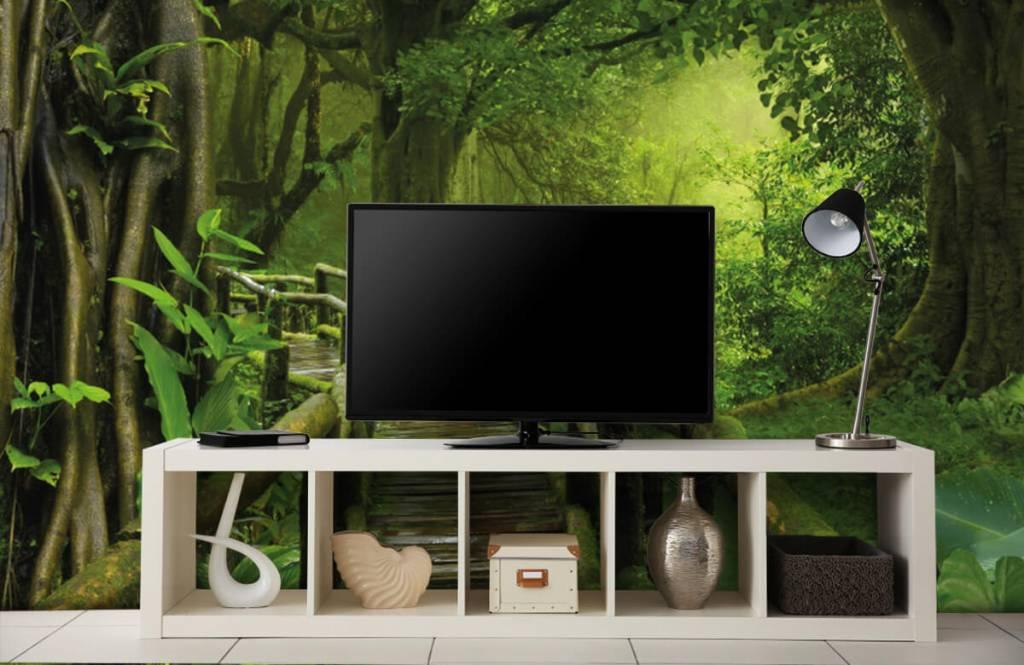 Träd Träbro till och med en grön djungel 5