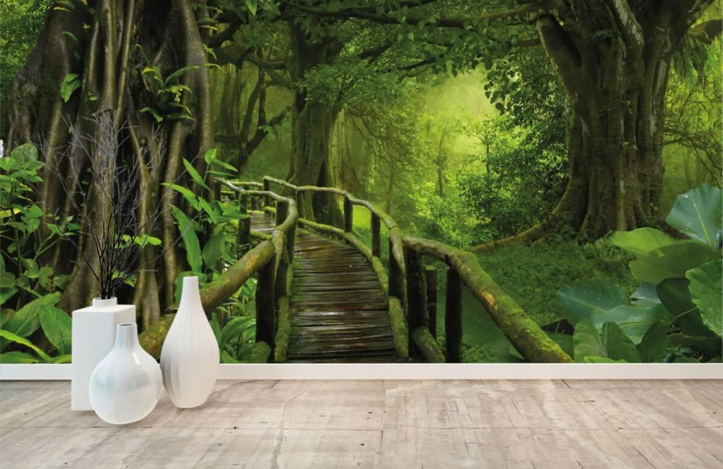 Träd Träbro till och med en grön djungel 8