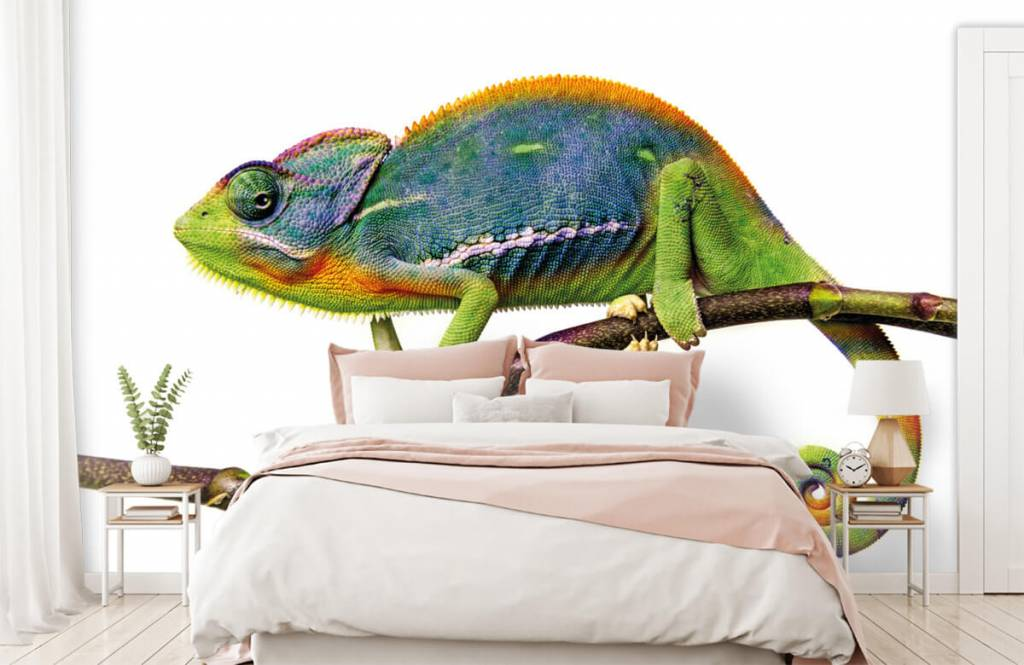 Övriga Kameleont 2