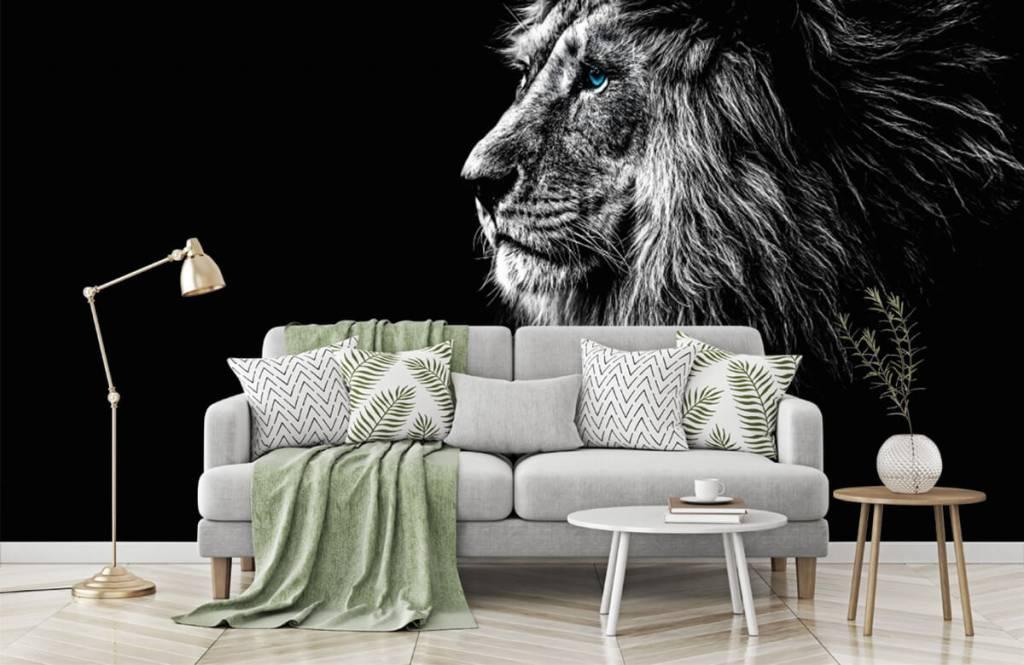 Safari djur Lejpå med blå ögon 7