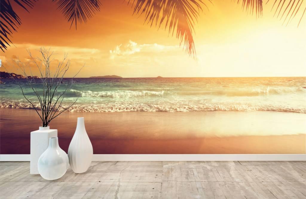 Stränder Orange solnedgång 8