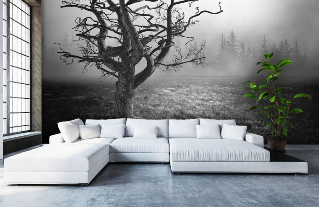 Svartvit tapet Elegant träd 1