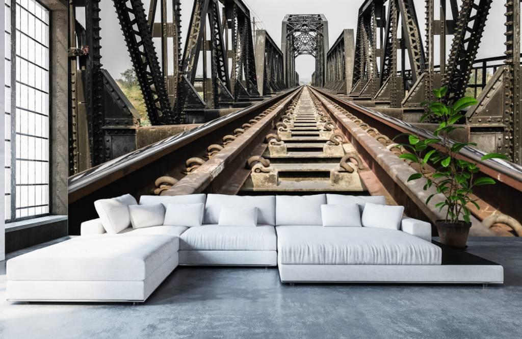 Element Metall järnvägsbro 6