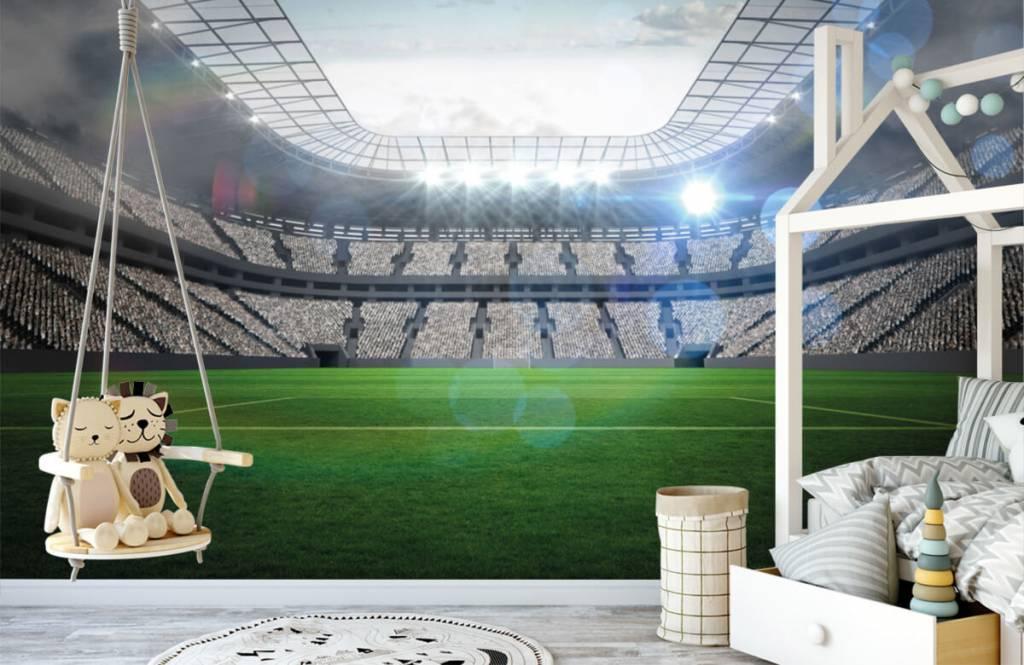 Stadion Stadion med öppet tak 1