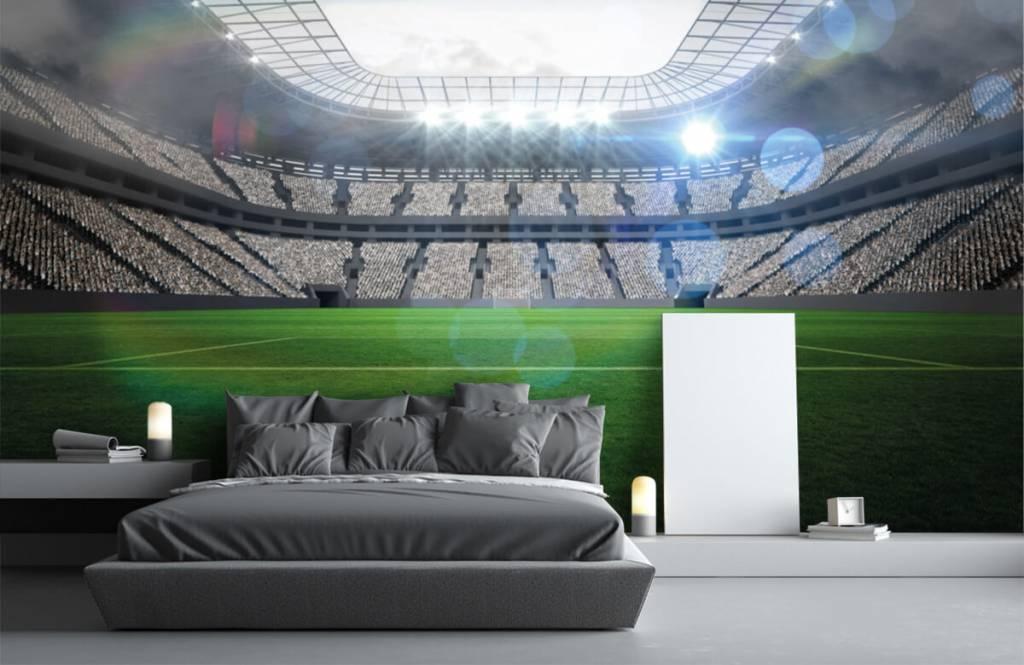 Stadion Stadion med öppet tak 2