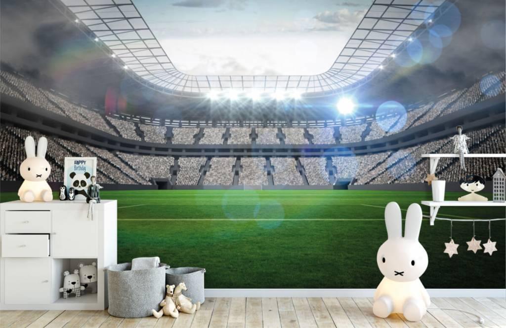 Stadion Stadion med öppet tak 4