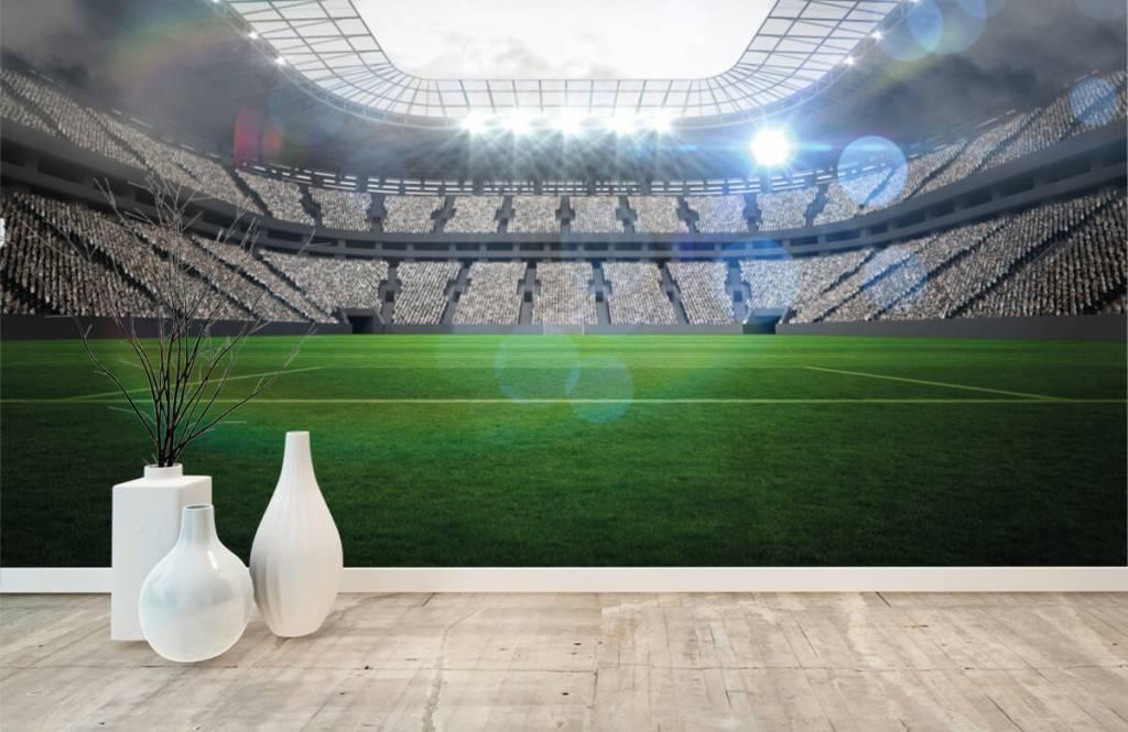 Stadion Stadion med öppet tak 5