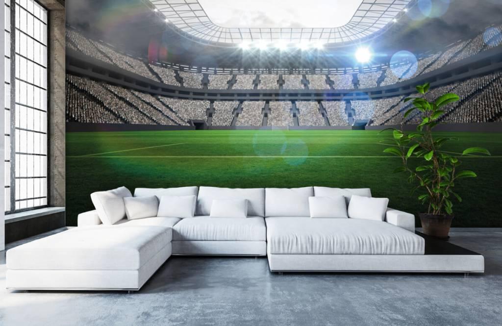 Stadion Stadion med öppet tak 6