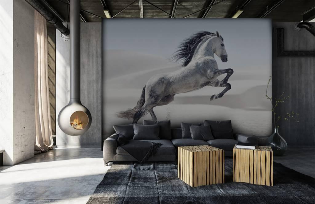 Hästar porträtt häst 1