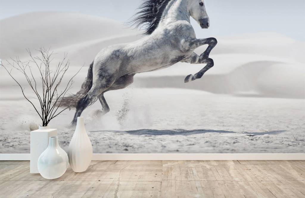 Hästar porträtt häst 2