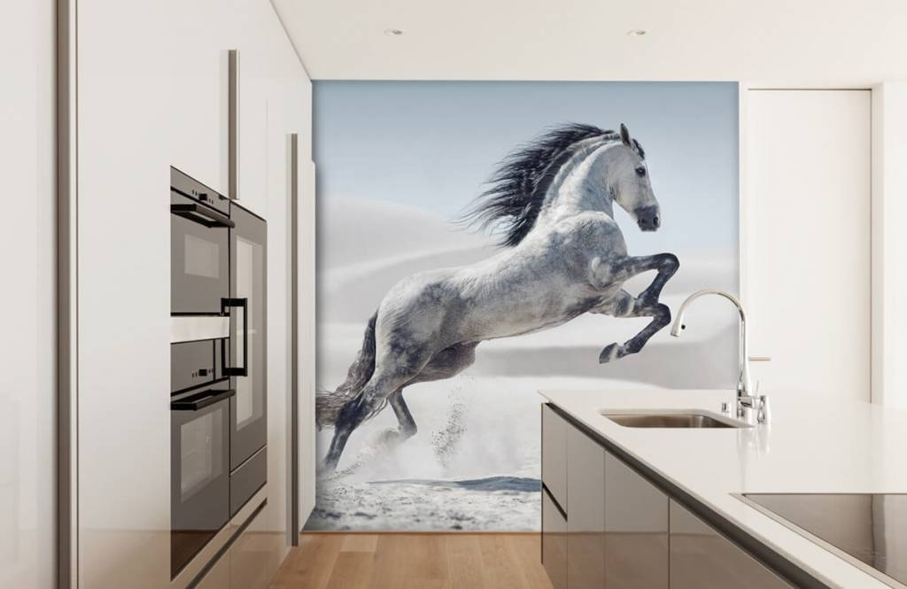Hästar porträtt häst 5