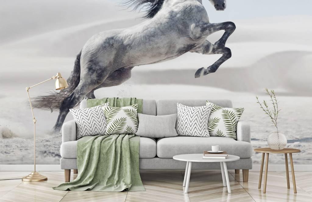Hästar porträtt häst 8