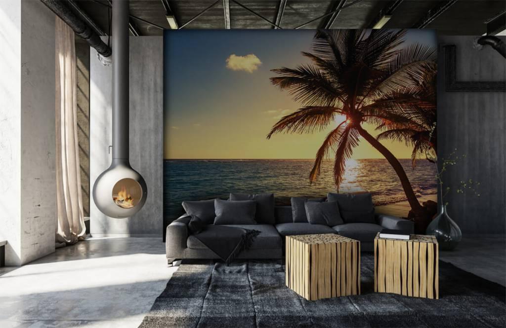 Stränder Tropisk skog 6