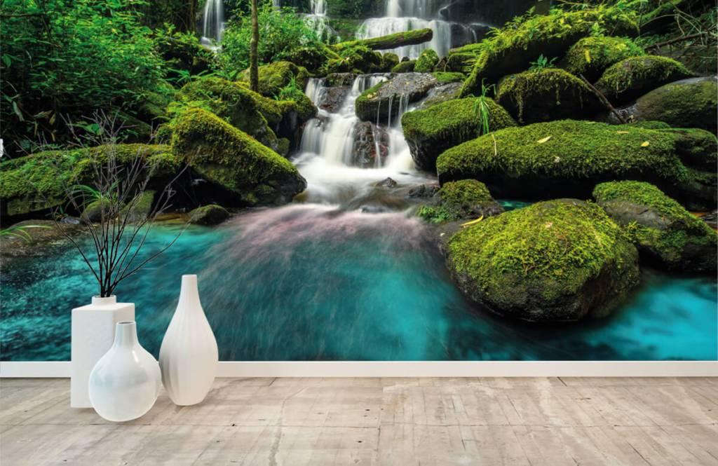 Vattenfall Vattenfall i en djungel 8