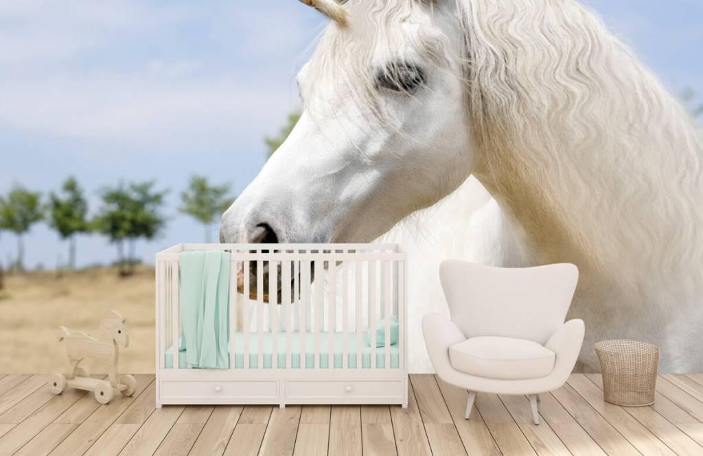 Hästar Vit enhörning 5