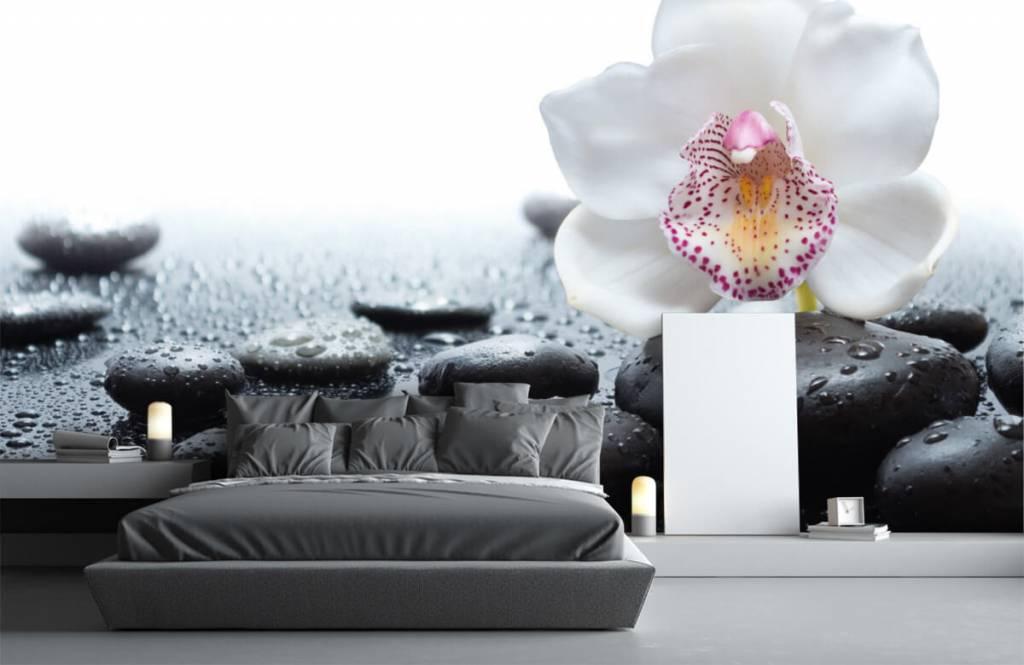 Övriga Vit orkidé 3