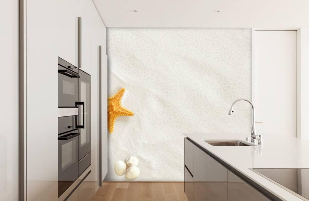 Stränder Sjöstjärna på vit sand 1
