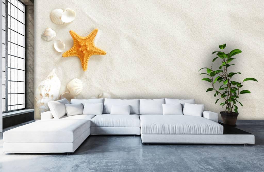 Stränder Sjöstjärna på vit sand 5