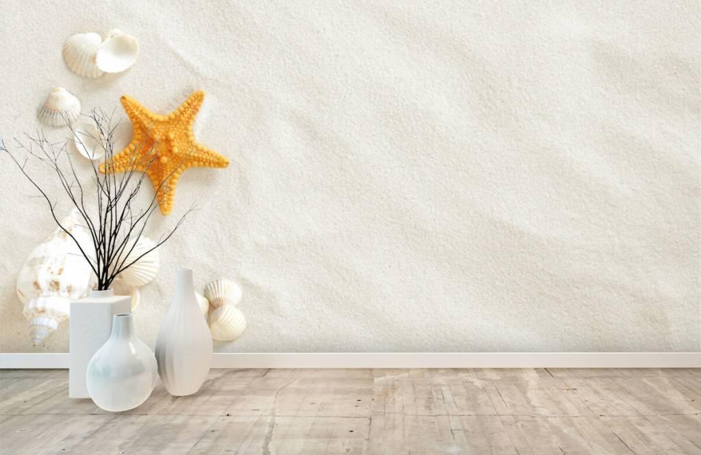 Stränder Sjöstjärna på vit sand 8