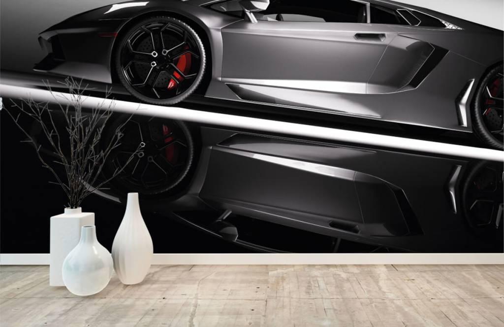 Transport Grå Lamborghini 1