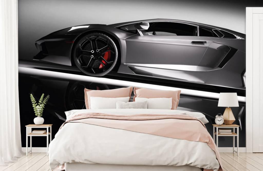 Transport Grå Lamborghini 3