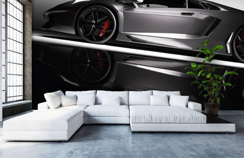 Transport Grå Lamborghini 6