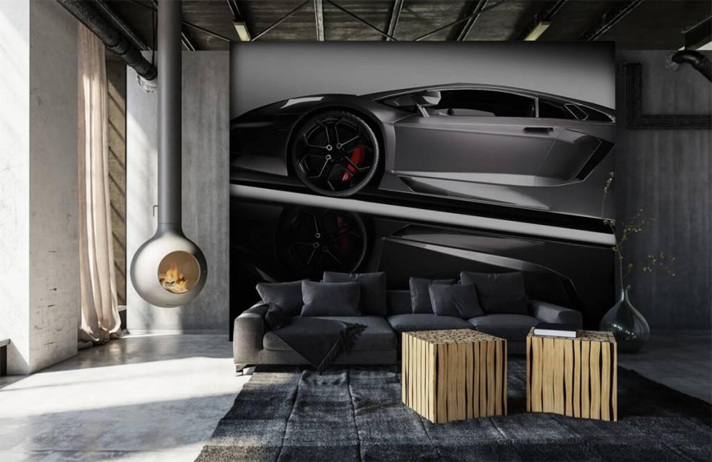 Transport Grå Lamborghini 7
