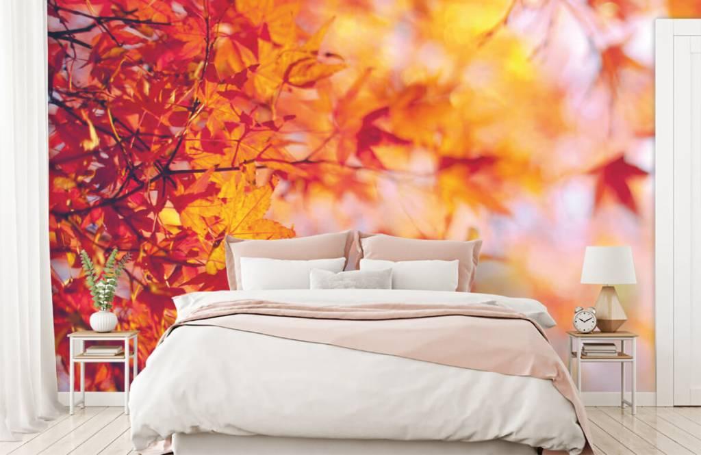 Löv Höstlöv 1